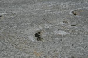 Monumento Natural das Pegadas de Dinossaurios